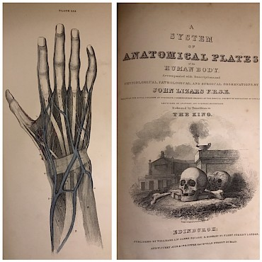 A System of Anatomical Plates, John Lizars FRSE, Edinburgh, sold for £300